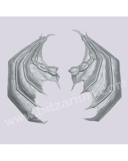 Paire d'ailes