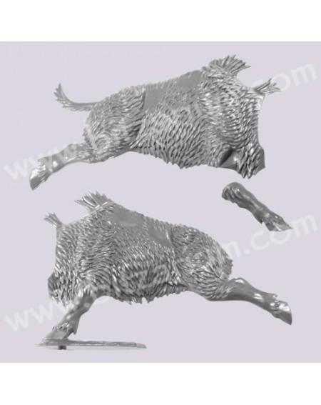 Boar Body 1