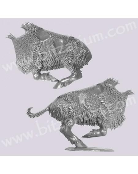 Boar Body 2