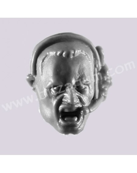 Head 1