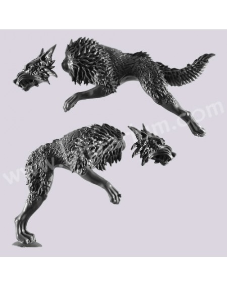 Loup Fenrissien 5