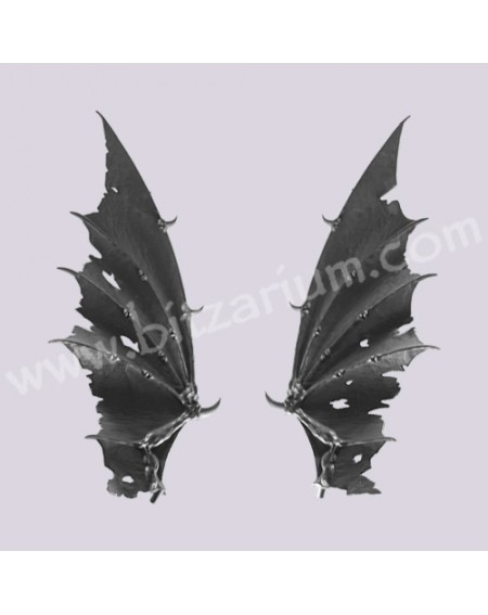 Dragon Wings