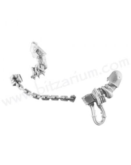 Chain 1