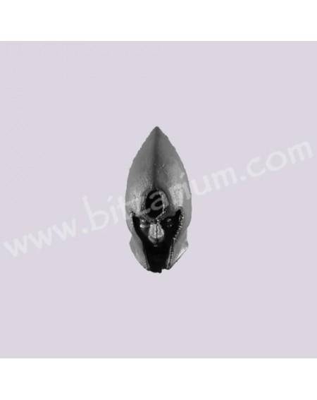 Head J - Black Ark Corsairs