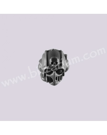 Helmeted Head 3 - Scions