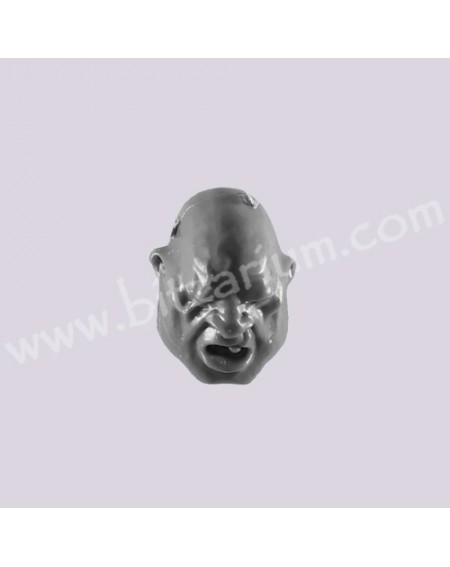 Head B - Ogryns