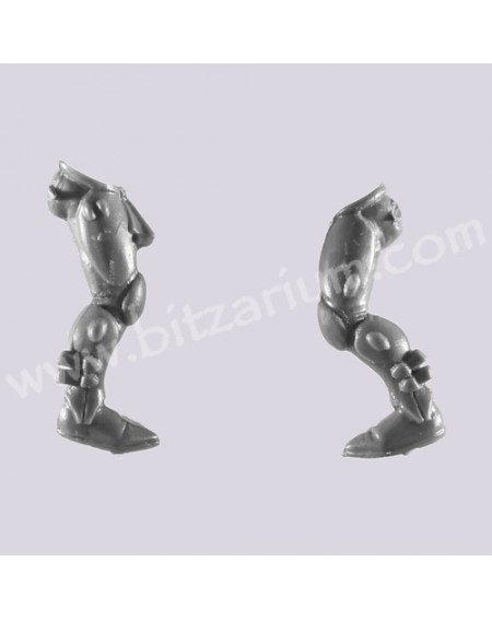 Legs 3 - Eldar Guardians